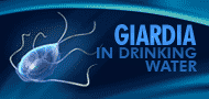 Giardia in Drinking Water